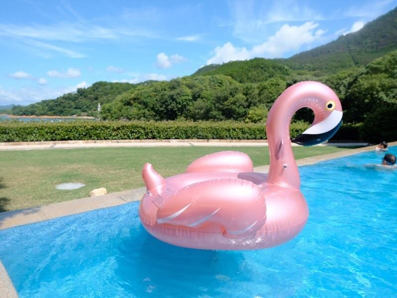 GIANT INFLATABLE ANIMAL POOL FLOAT