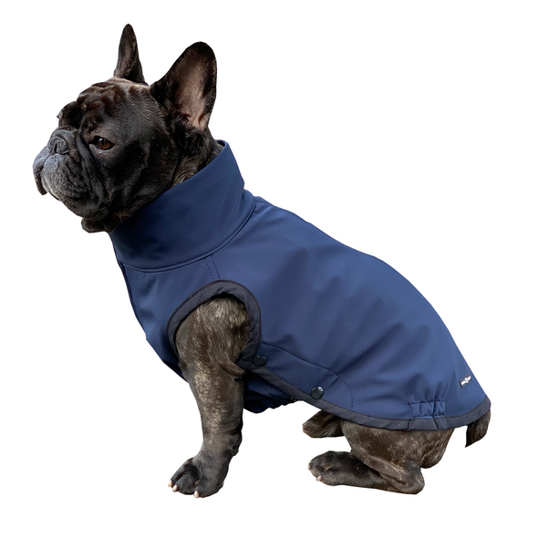 dognadhaf_navy_dog_jacket_for_frenchie