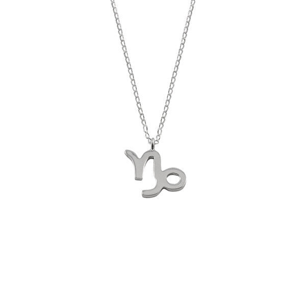 Capricorn Silver Zodiac Necklace
