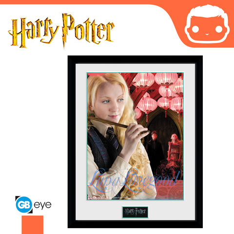 Harry Potter - 30 x 40 Collector Print - Luna