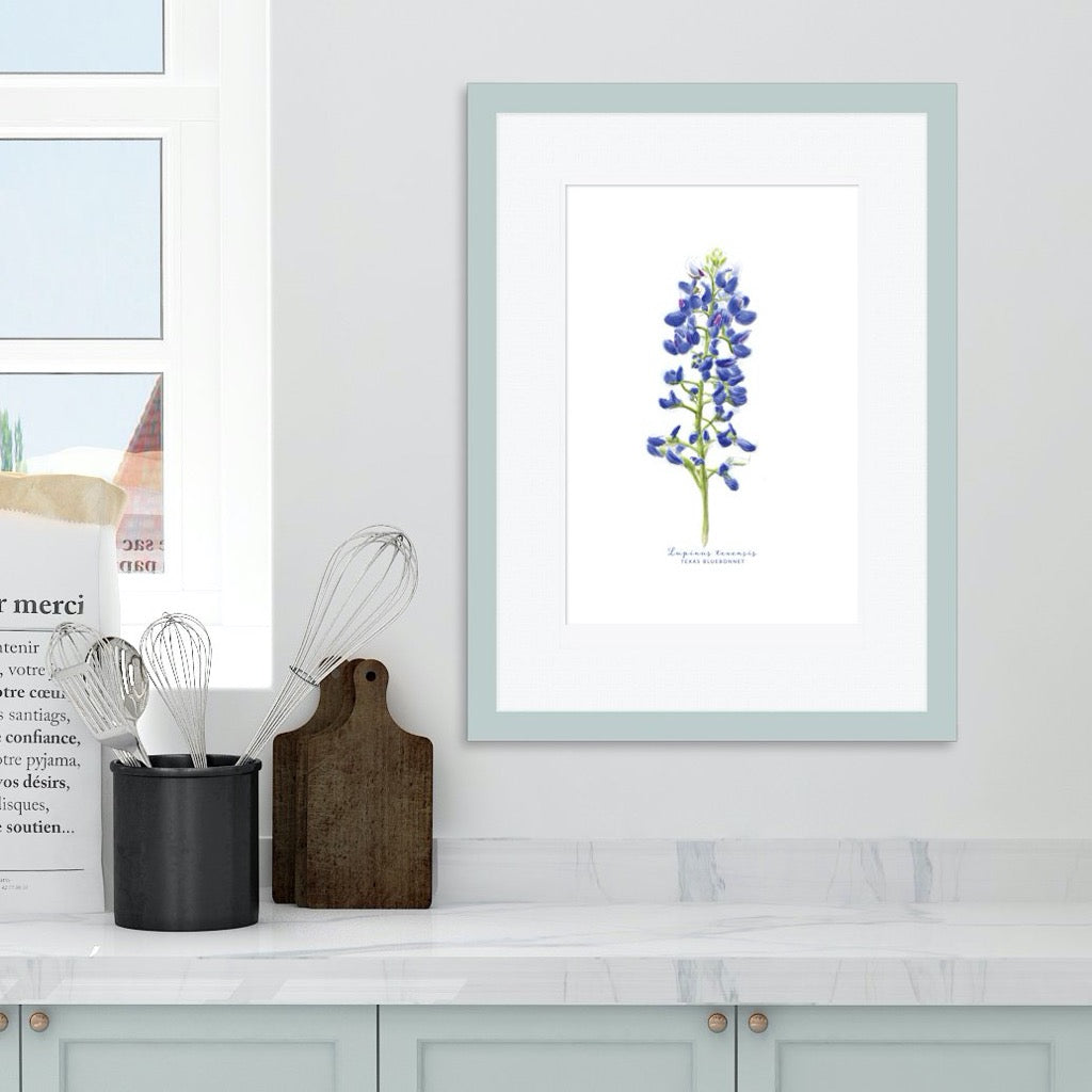 Texas Bluebonnet watercolor framed