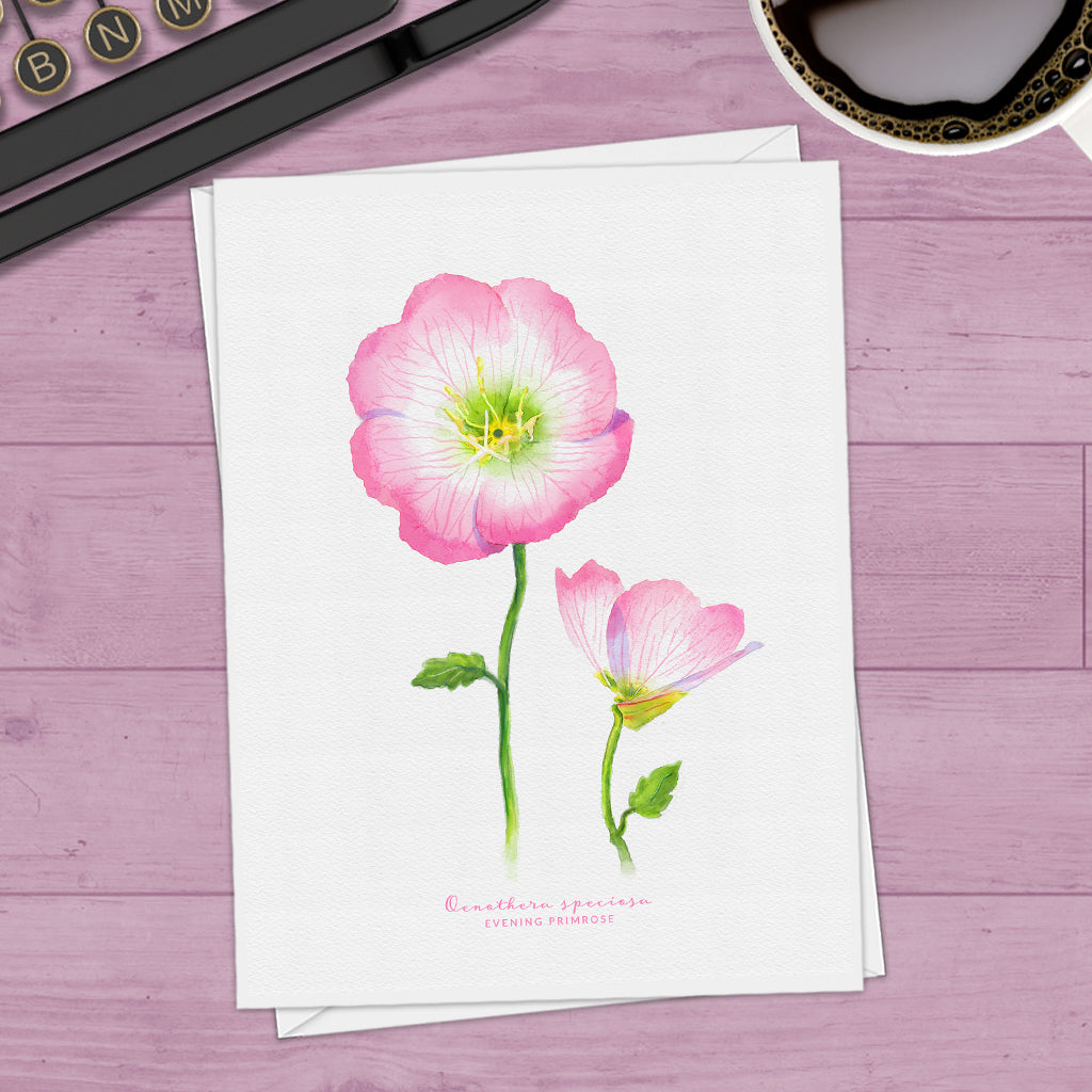 Evening Primrose Note Cards