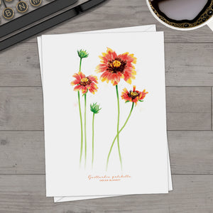 Indian Blanket Note Cards