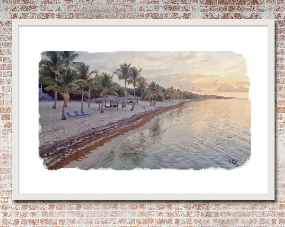Little Cayman Pink Sunrise