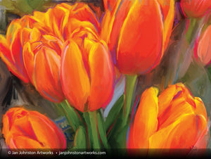 Orange Tulip Bunch