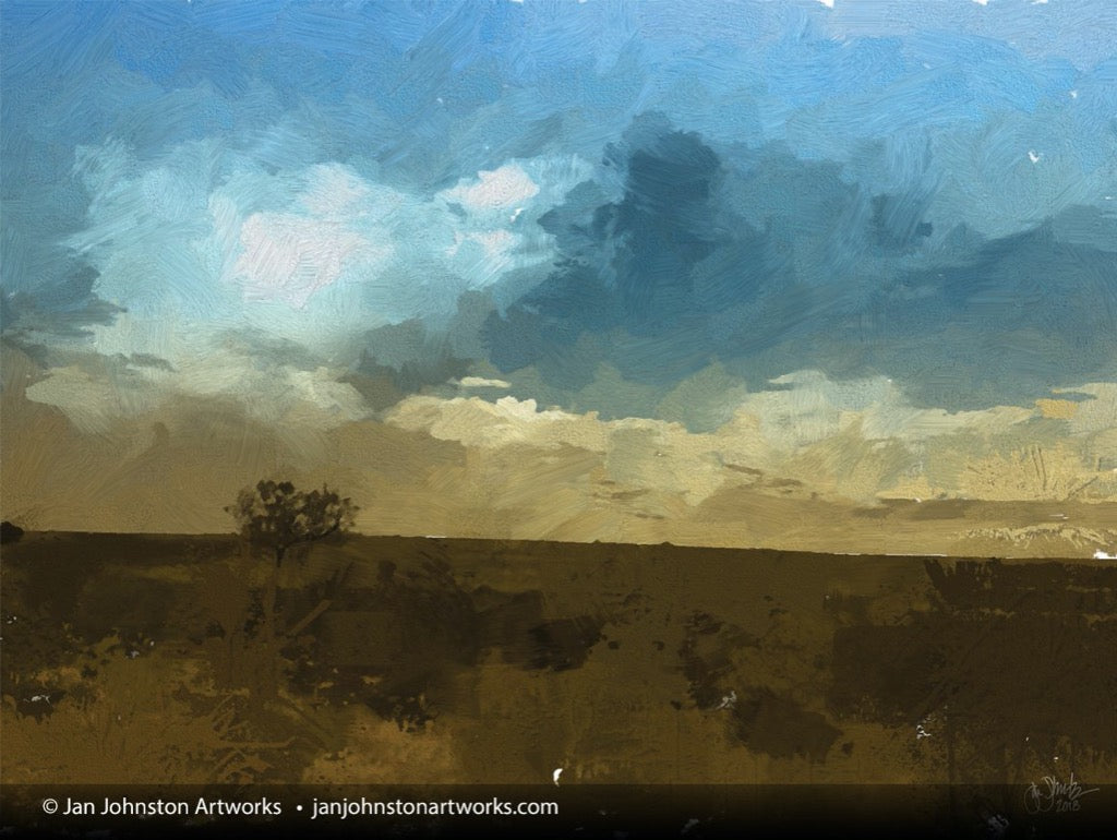 Wild Texas Field and Sky