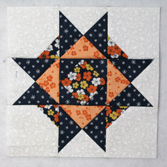 january thaw quilt block