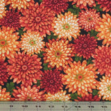 Packed Chrysanthemums in Black Autumn Album Henry Glass