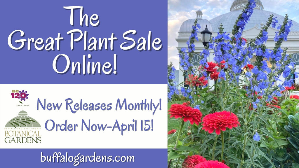 The Great Plant Sale is Available Online Now through April 15 with Curbside Pickup in May!