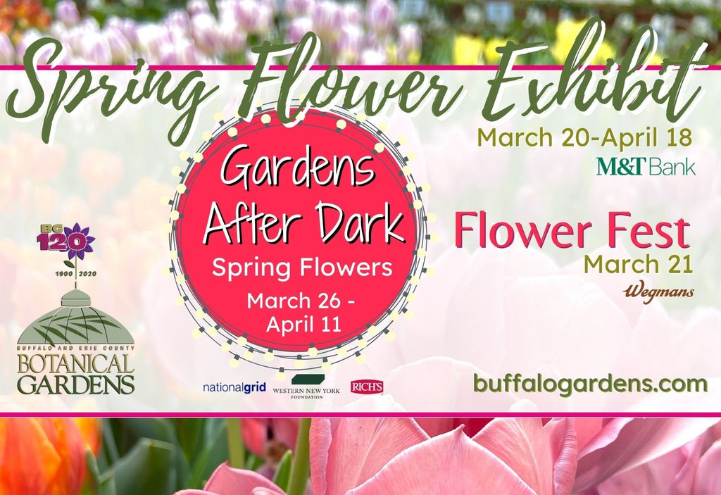 SPRING... a Spectacular Time of Year at the Botanical Gardens – During the Day and After Dark!