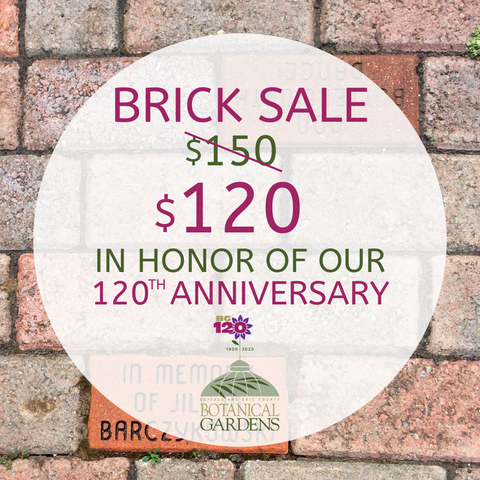 120th Anniversary Brick Sale!