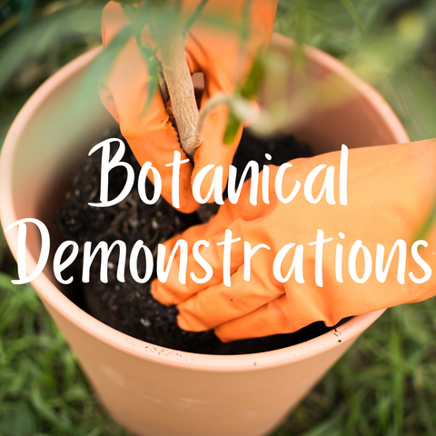 NEW! Botanical Demonstrations
