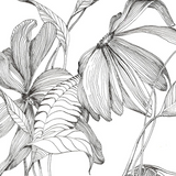 Botanical Line Drawing - ONLINE - September 10
