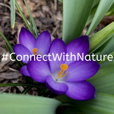 #ConnectWithNature