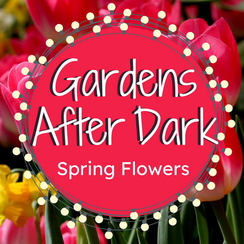 Gardens After Dark: Spring Flowers