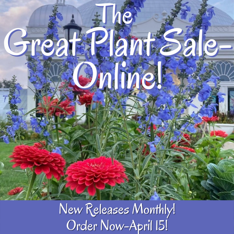 2021 Great Plant Sale Online