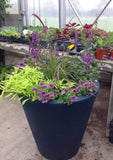 The Great Plant Sale-Online!