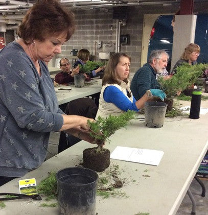 Beginning Bonsai Workshop