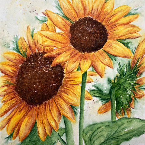 Sunny Sunflowers Workshop- May 27
