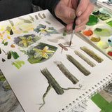 Intermediate Watercolor Tuesday Evening