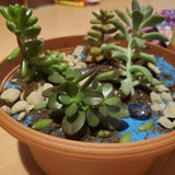Mini Garden Workshop