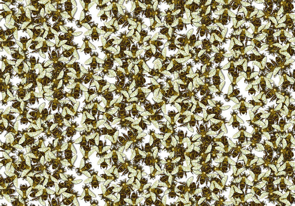 Wild Honey Bee Allover Wallpaper by Timorous Beasties
