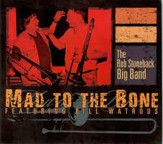 Mad to the Bone - Rob Stoneback, Stonequake Recordings
