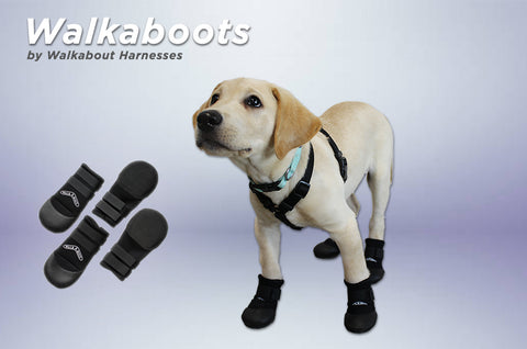 Walkaboots™