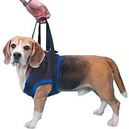 Walkabout front end harness on a beagle