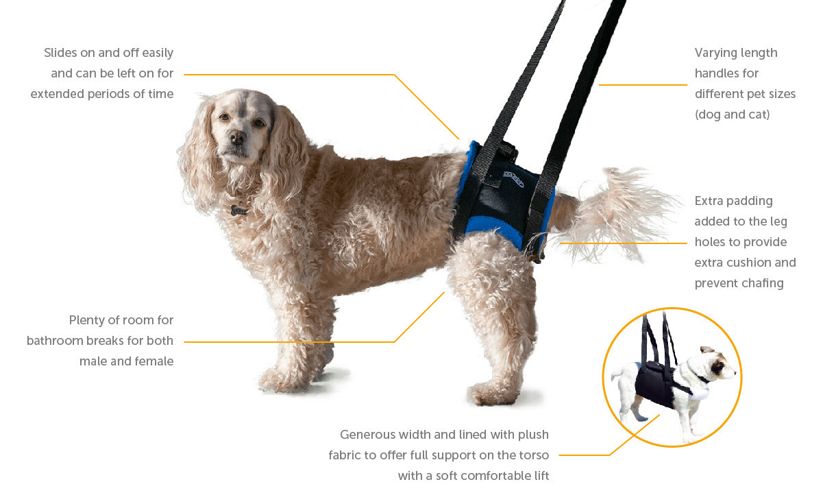 About – Walkabout Harnesses, LLC