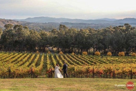 Gapsted Wines - Wedding