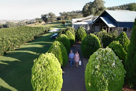 Gapsted Wines' Cellar Door