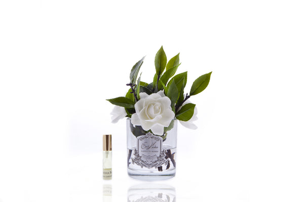 Côte Noire Perfumed Natural Touch Four Gardenias - Clear Glass - Cream - SFPC09