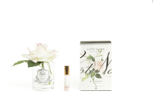 Côte Noire Perfumed Natural Touch Single Rose - Clear - Pink Blush - GMR02