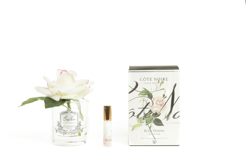 Cote Noire Perfumed Natural Touch Single Rose - Clear - Pink Blush - GMR02
