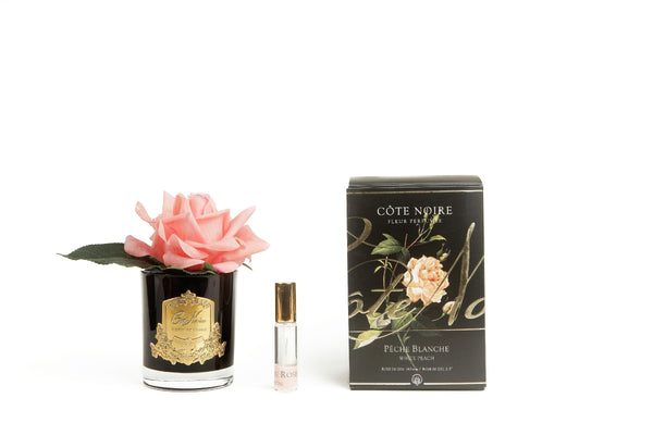 Côte Noire Perfumed Natural Touch Single Rose - Black - White Peach - GMRB05