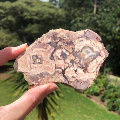 PROPHECY Slice of Rhyolite with Mineral Infills from Western Queensland Aus