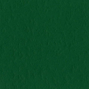 Bazzill Cardstock Classic Green