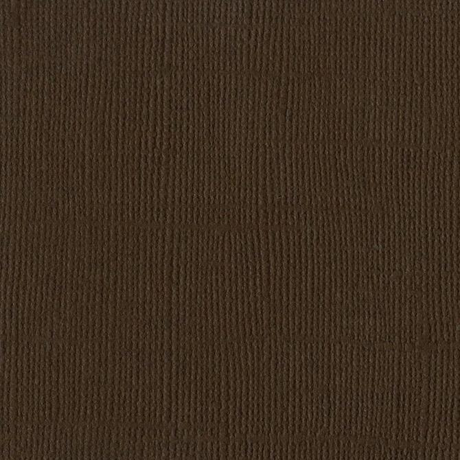 Bazzill Cardstock Brown