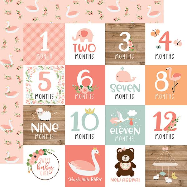 Echo Park Baby Girl Milestone Cards