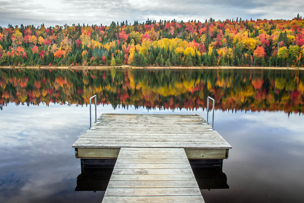 7 Autumn Dock Care Tips