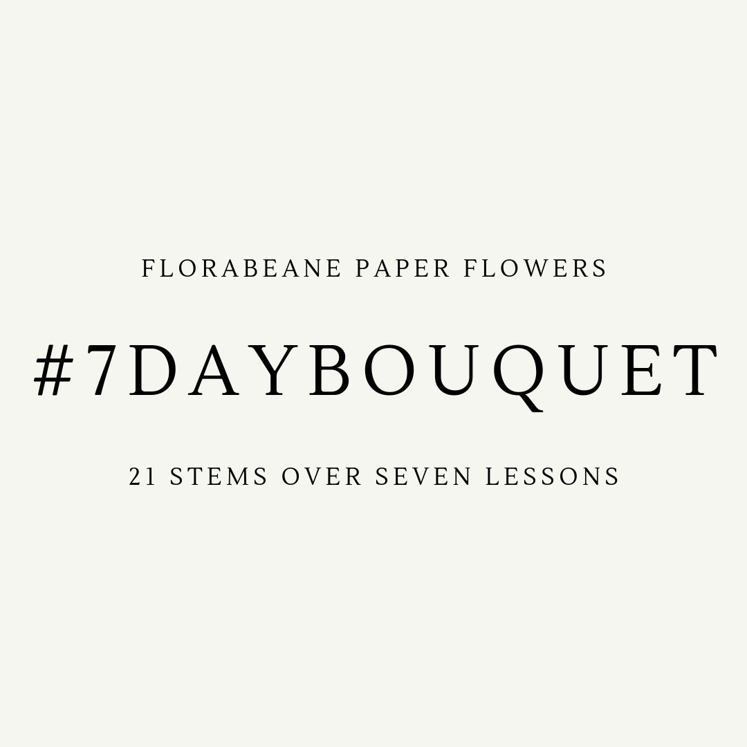 Try out Florabeane's 7 Day Bouquet