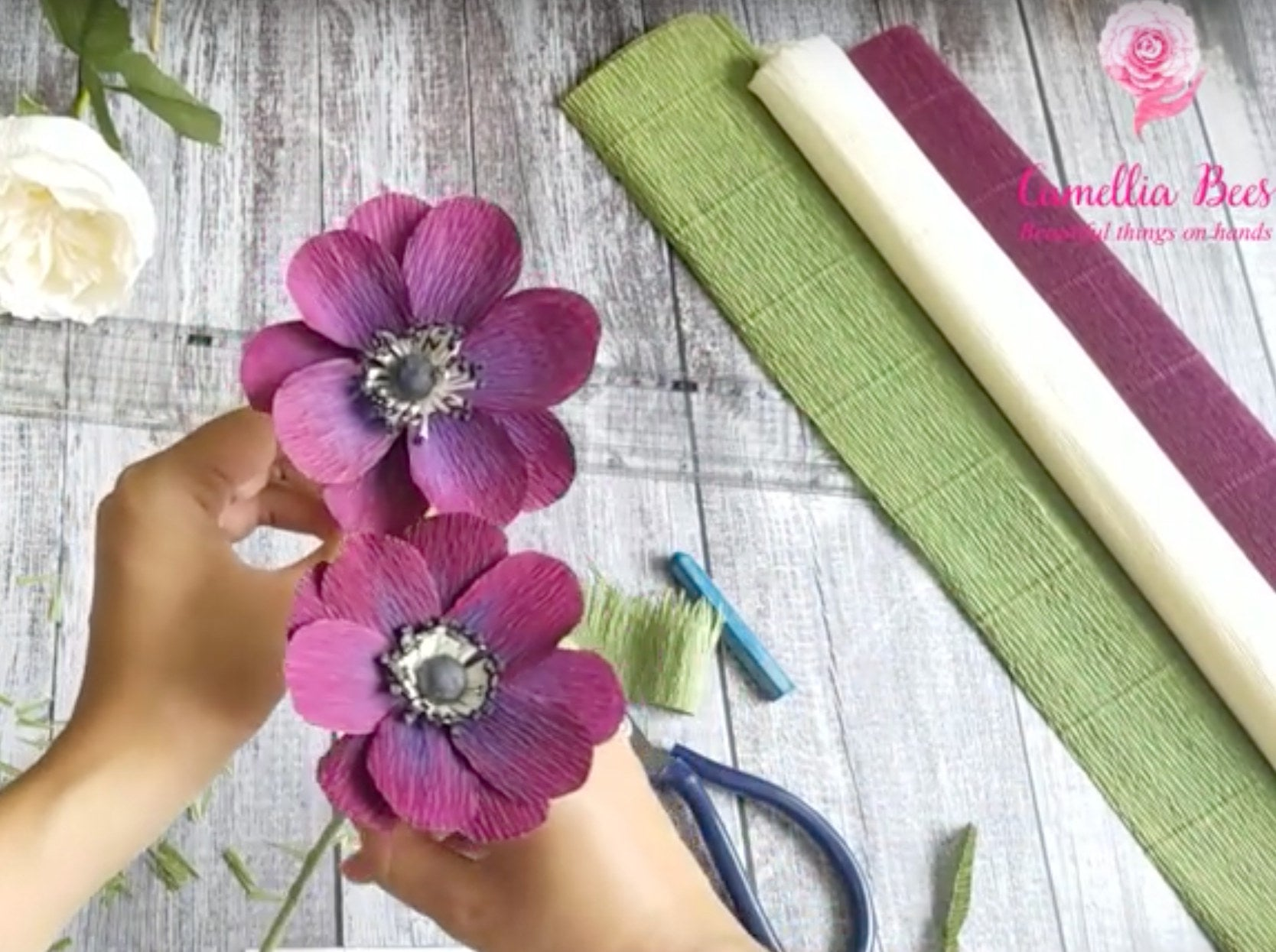 anemone crepe paper flower