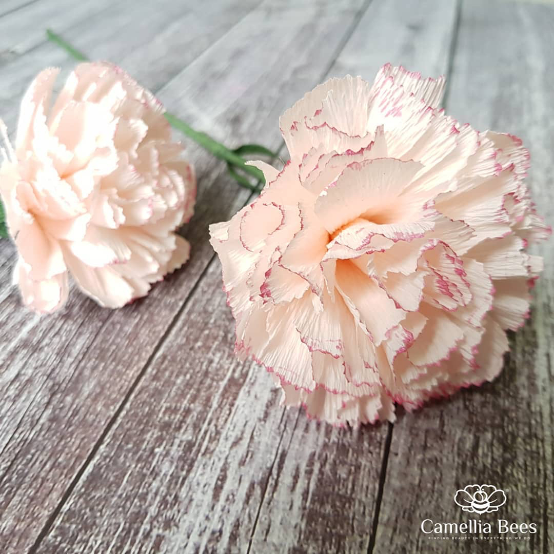 Carnation Crepe Paper Flowers DIY Video