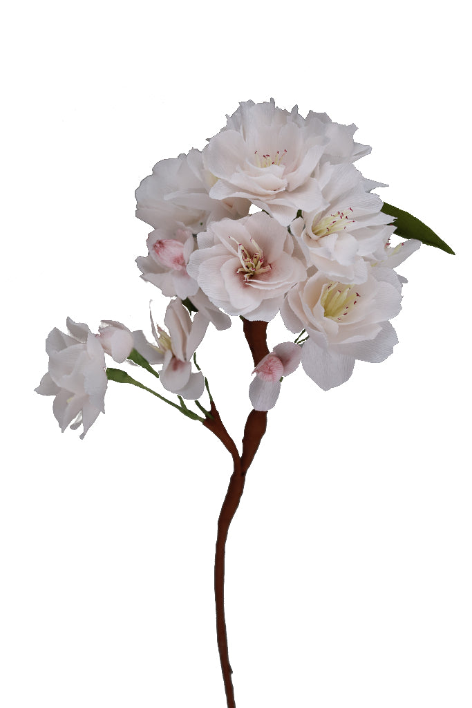 Cherry Blossoms  - Individual floral stem