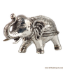 Shiny Little Elephant