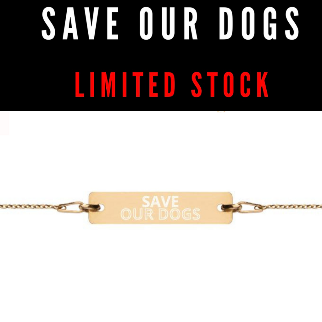 SAVE OUR DOGS BRACELET