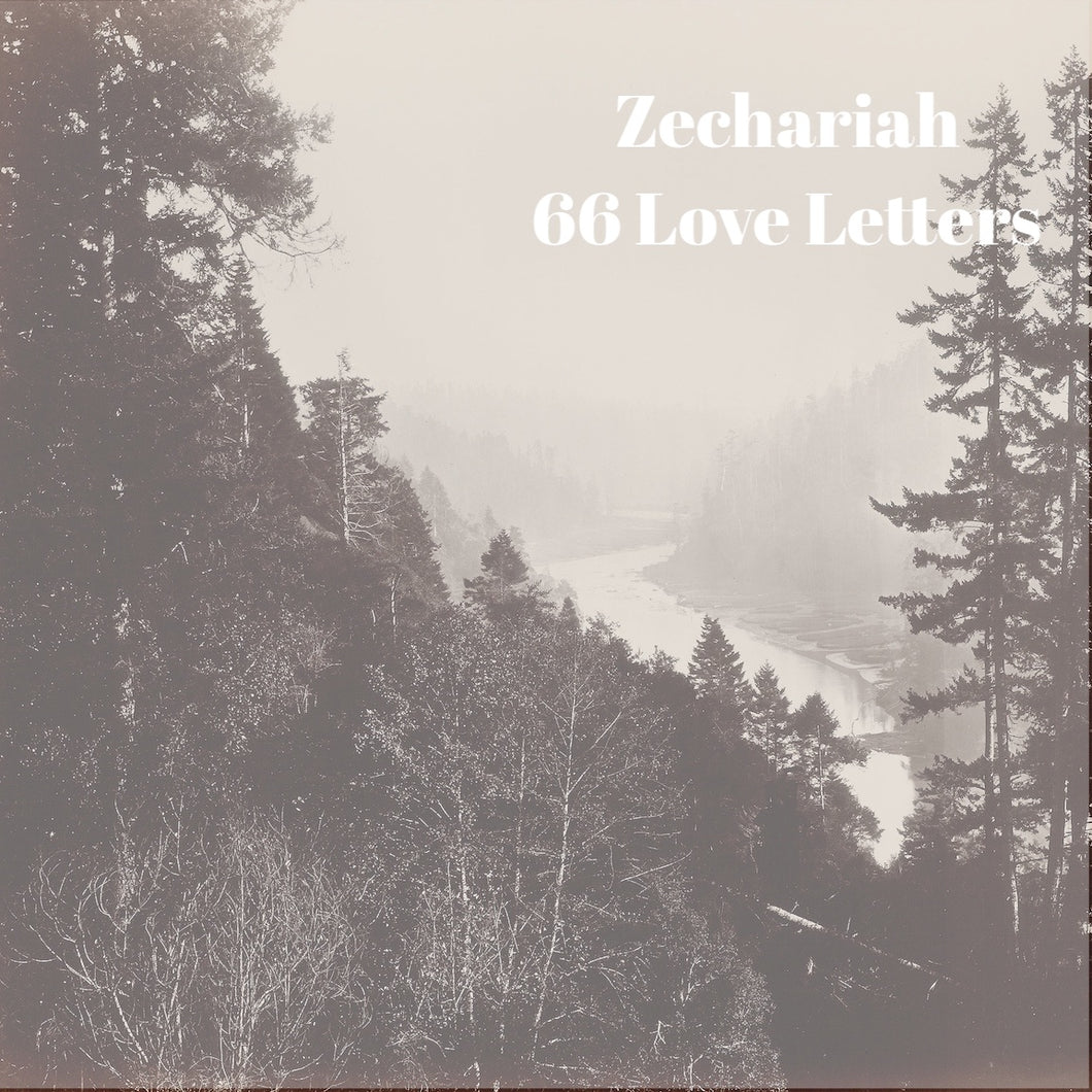 66 Love Letters Study Guide: Zechariah