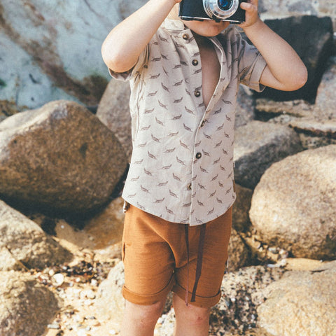 Stylish Summer Shorts For Little Boys