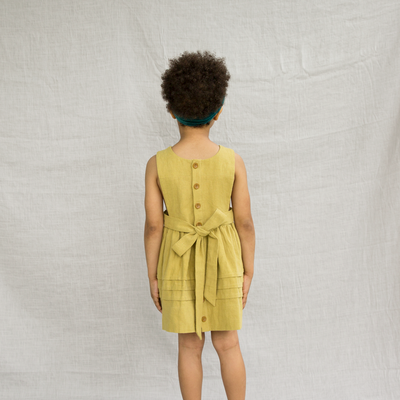 Fern Bib Front Dress